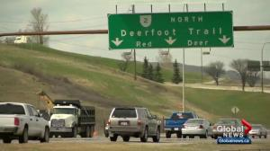 City of Calgary and Alberta Transportation recommend improvements on Deerfoot Trail