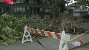 Busy City Crews during storm of the decade