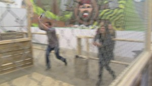 Global News Morning crew tries axe throwing for the first time