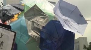 'Umbrella Statue' erected in Hong Kong