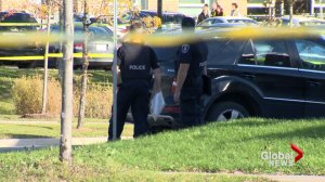 4-year-old girl dies after being stuck by SUV in Markham