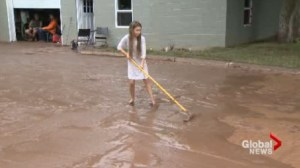 Neighbours help ease the burden following Burlington flash floods