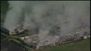 3,500 hogs died in a Thursday night fire near New Bothwell, Man.