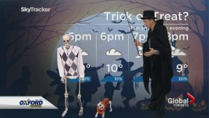 Junior meteorologist takes the News Hour by storm