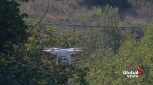 Lethbridge police taking to the skies to fight crime with drones