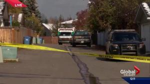 Calgary police confirm shooting incident has occured in southeast