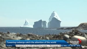 Why the world has set its sights on Ferryland, Newfoundland