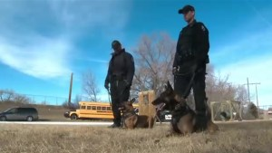 Lethbridge police set to welcome 2 new members to its K9 team