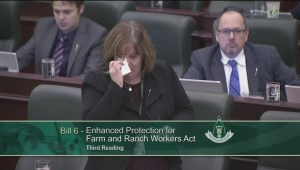 Energy minister breaks down in tears during final Bill 6 debate