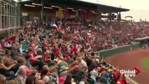Town of Okotoks soaking up Dawgs baseball success ahead of playoffs