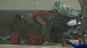 Number of homeless Edmontonians drops