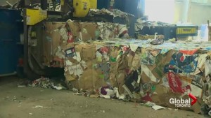 Canadians throwing away more garbage than ever: Stats Canada