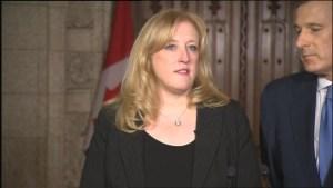 Raitt: Trudeau misleading Canadians, saying Liberals inherited budget deficit