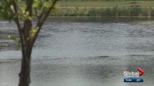 Girl pulled from north Edmonton pond