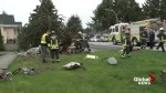 Fallen tree traps child in car
