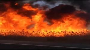 Derailed oil train catches fire in North Dakota