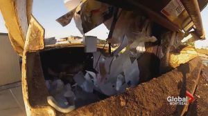 Beaconsfield garbage cameras