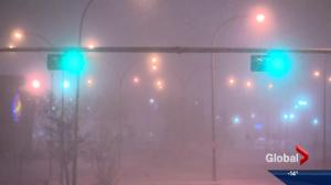 Edmonton's wacky winter weather