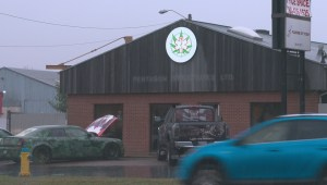 Edmonton gets Marijuana for Trauma veterans support centre