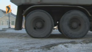 Southern Manitoba under winter storm warning; Winnipeggers bracing for 25 cms of snow