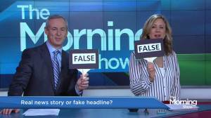 'True or False' with Global National anchor Dawna Friesen