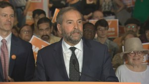 The return of professional baseball to Montreal is welcome, as long as taxpayers aren't on the hook: Mulcair