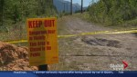 Rare Kananaskis Country-wide bear warning in effect