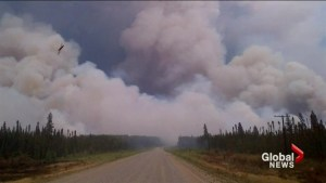 Almost 7000 people forced to leave homes as wildfires grow in Saskatchewan