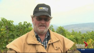 Golden Mile Bench appellation nearing fruition