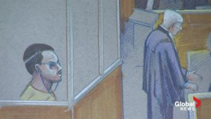 Luka Magnotta's trial opens with stunning admission