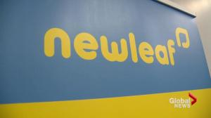 NewLeaf Travel set to take flight in Moncton