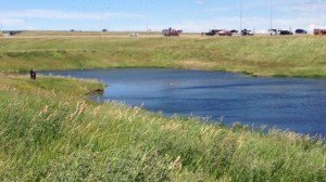 Body discovered in pond in northeast Calgary
