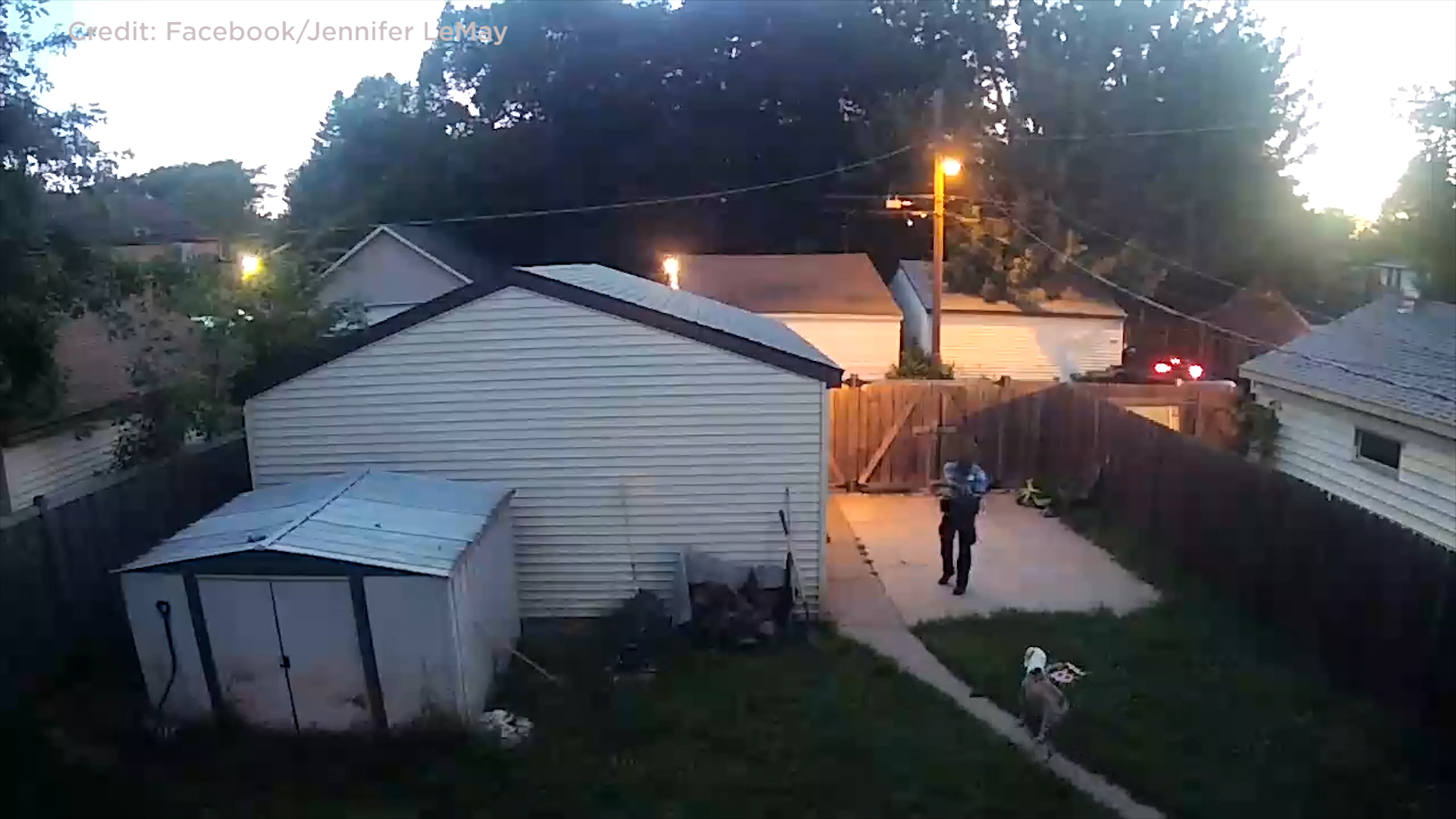 Video shows police officer shoot two dogs in Minneapolis yard