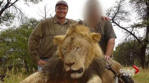 Public outcry over killed lion as hunter apologizes