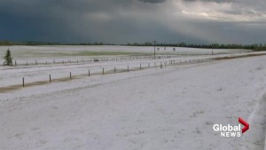Violent storm passes through southern Alberta