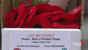 Businesses warned about poppy box thefts