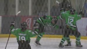 Oak Park Raiders claim high school hockey crown