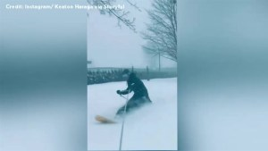 Snowboarder takes a ride through snowy streets in Chilliwack, B.C.