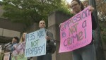 Raw: Vancouver animal rights activist protest 'pig trial'