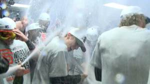 Giants champagne shower and reaction to World Series win