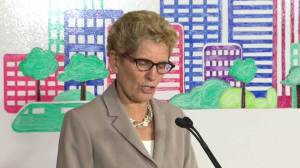 Wynne argues lack of climate change action could be more costly to taxpayers