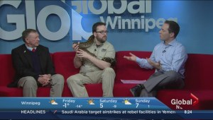 Morning News gets snakey with zookeepers