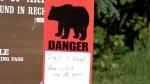 Bear kills teen during mountain race in Alaska
