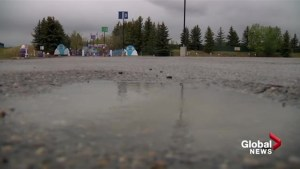 Cold and wet long weekend puts some plans on hold