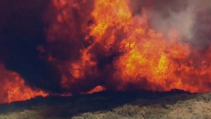 Fast moving Blue Cut fire tears through San Bernardino Valley forcing mass evacuations