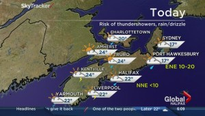 Morning News Weather Report July 21