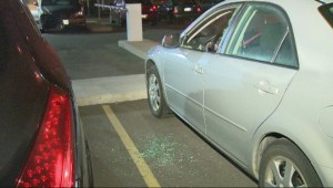 One suspect in custody after dozens of car windows smashed