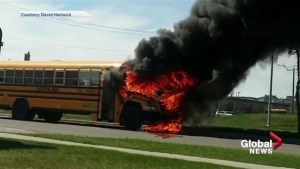 Dozens of school children rescued after Calgary school bus catches fire