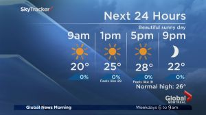 Global News Morning weather forecast: Tuesday, August 1