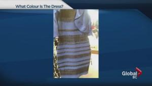 Science behind the great dress debate